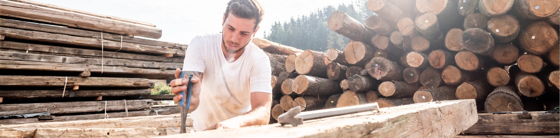 Altholz reinigen